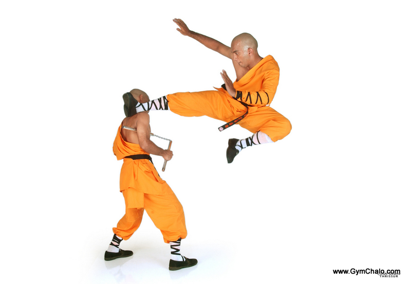 how to learn kungfu